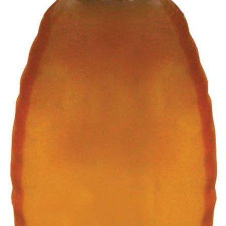 Plastic Squeeze Bottle 1 lb. 12 pk