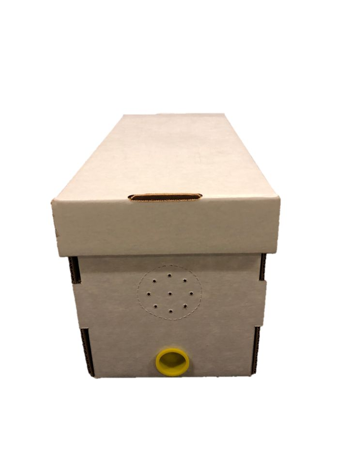 Cardboard Nuc Boxes with Cap Plug