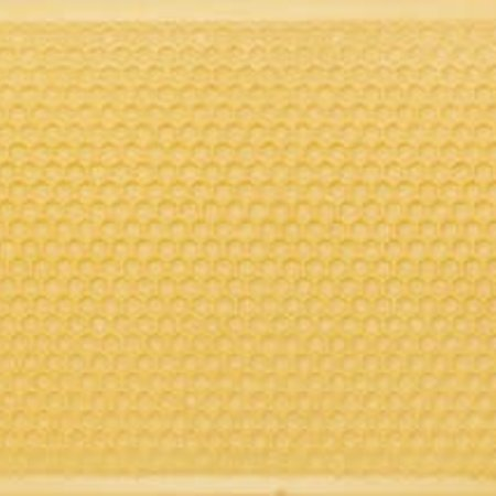 Shallow Yellow Foundation Case of 10
