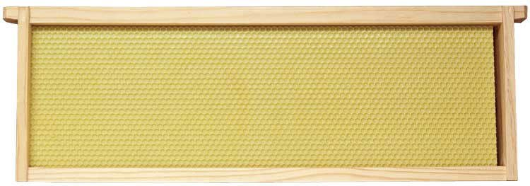 Case of 10 Medium Assembled Frames w/Yellow Foundation