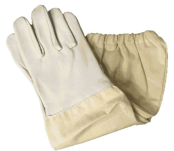 Economy Non-Vented Gloves