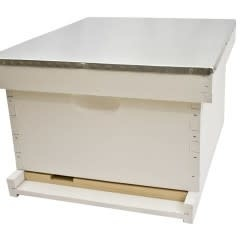 Single Hive with New Equipment