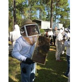 2020 Beginning Beekeeping Classes - Dayton, TX
