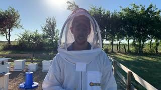 When to harvest honey from your hive - Video
