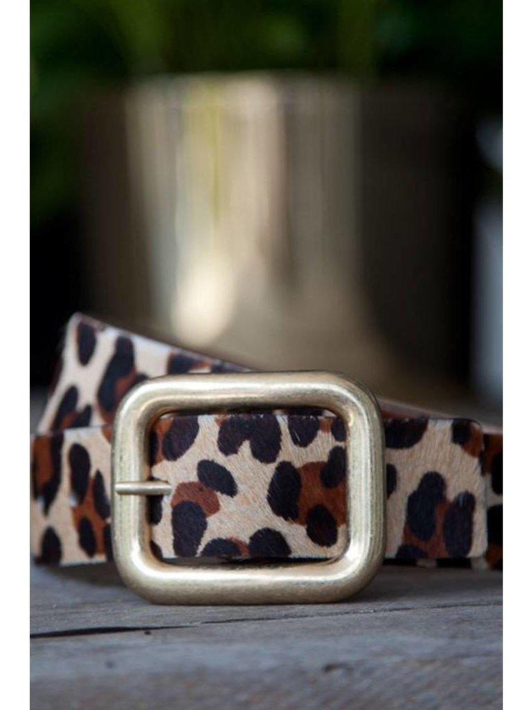 00e963e458 Big Leopard Print Vintage Gold Buckle Belt