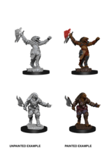 WizKids WZK D&D Minis: W11: Female Dragonborn Fighter