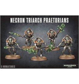GW: Games Workshop GW: 40K: Necrom Lychguard/Triarch Praetorians