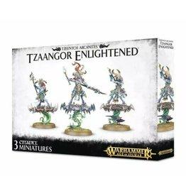 GW: Games Workshop GW: AoS: Chaos Tzeentch Arcanites Tzaangor Enlightened