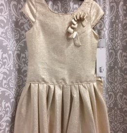 Gold Drop Waist Dress
