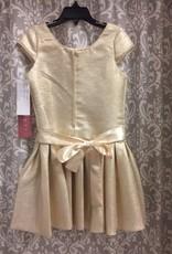 Gold Drop Waist Dress