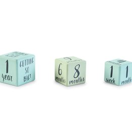 Boy Milestone blocks