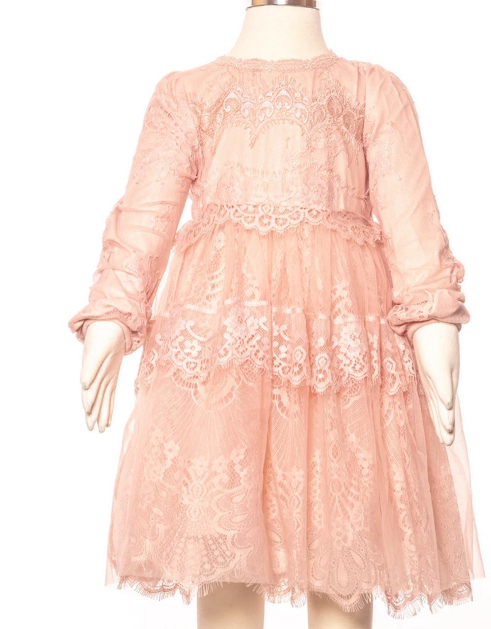 Blush Princess Lace Dress