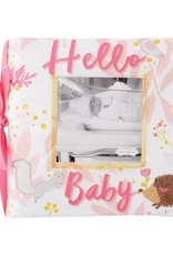 Hello Baby Girl Book