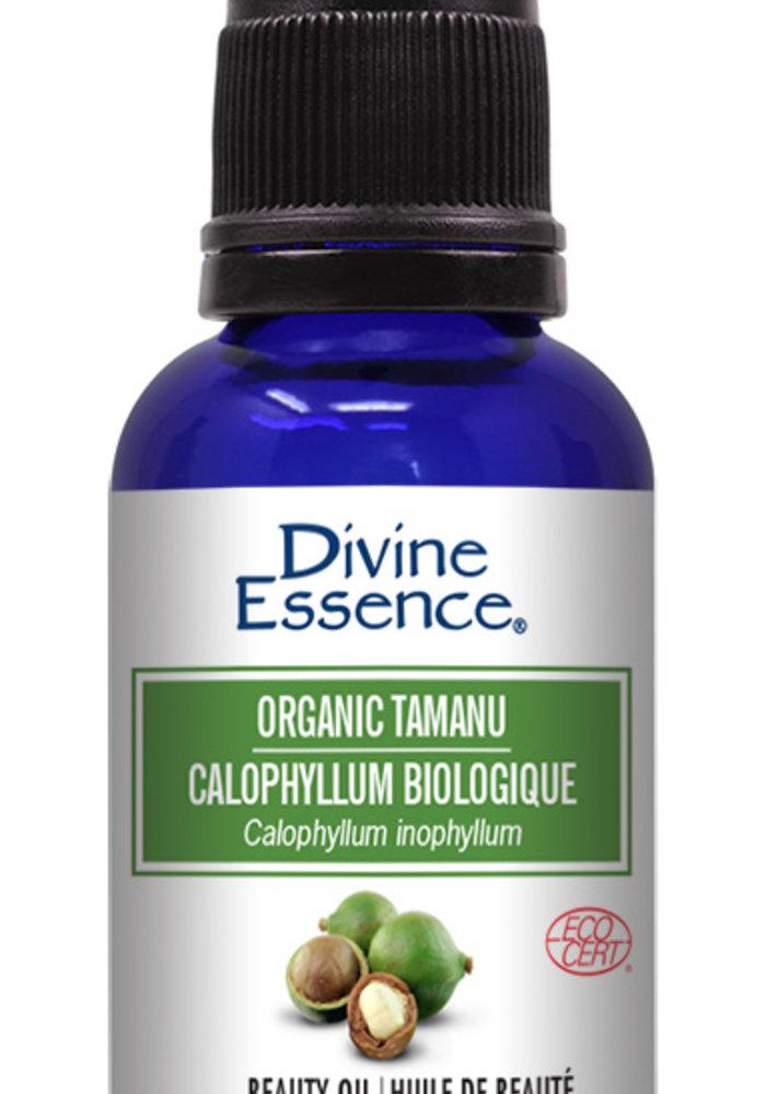 Divine Essence - Huile végétale bio - Tamanu  30ml