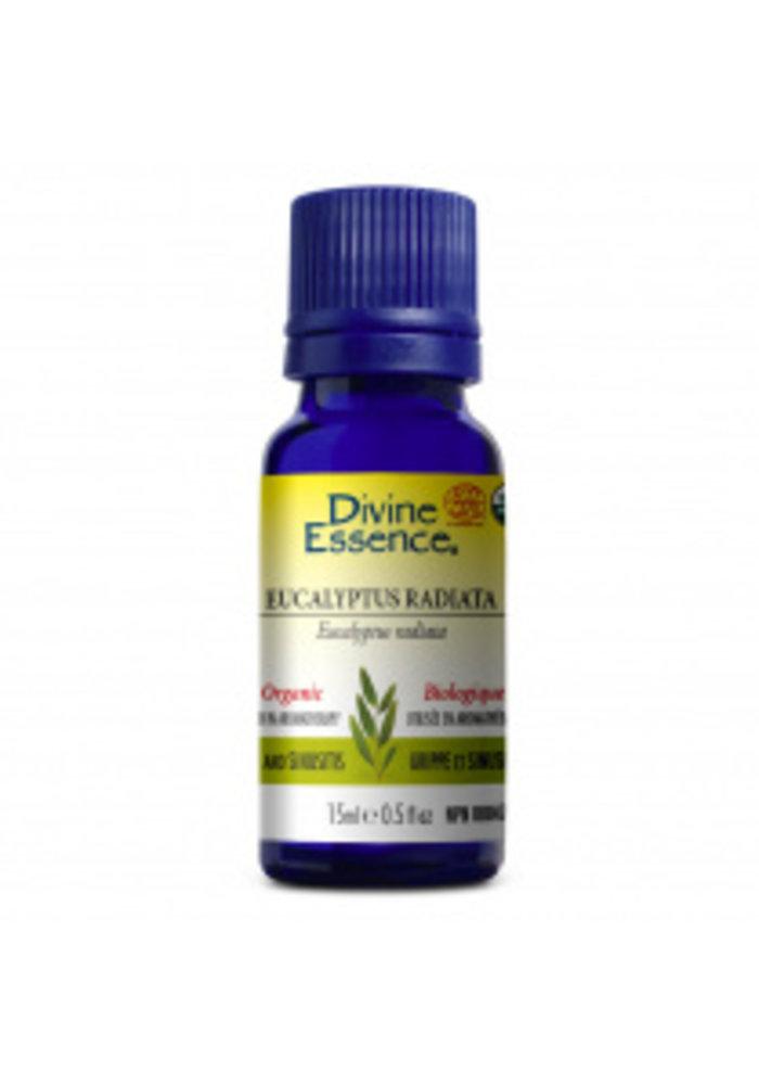Divine Essence - Huile essentielle bio - Eucalyptus radiata 15ml