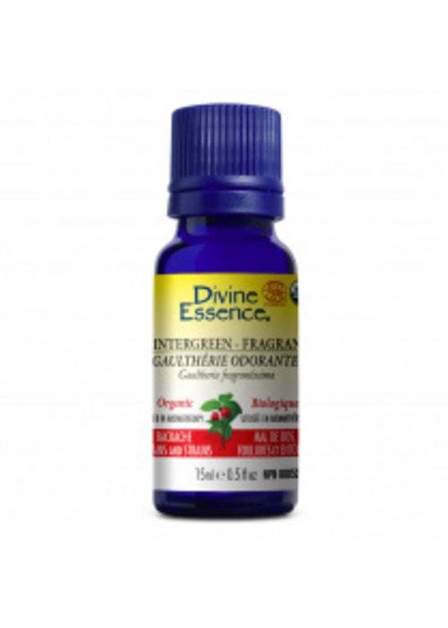 Divine essence Divine essence - Huile essentielle - Gaulthérie Odorante 15ml