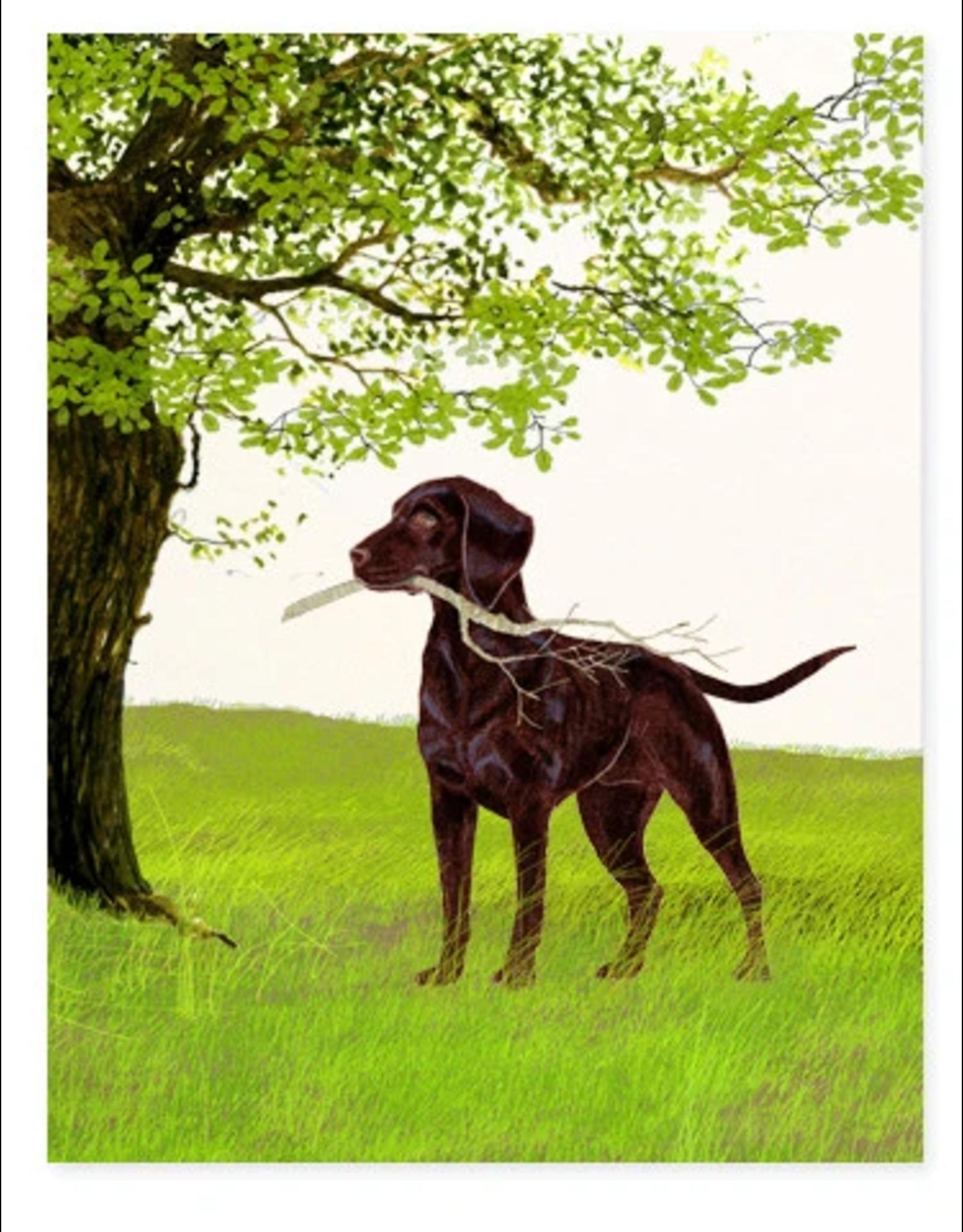 Felix Doolittle Stick Card