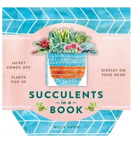 Hachette Succulents in a Book