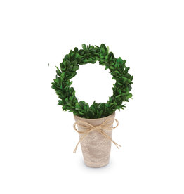 Preserved Boxwood Topiary Wreath Small