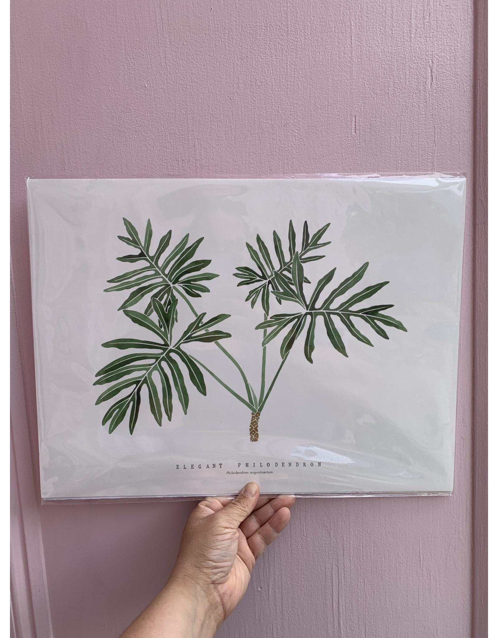Elegant Philodendron 12x16