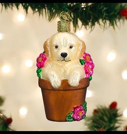 Puppy in Flower Pot Ornament