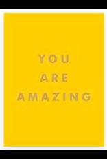 Hachette You Are Amazing  Mini Book