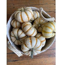 Mini Striped Pumpkin