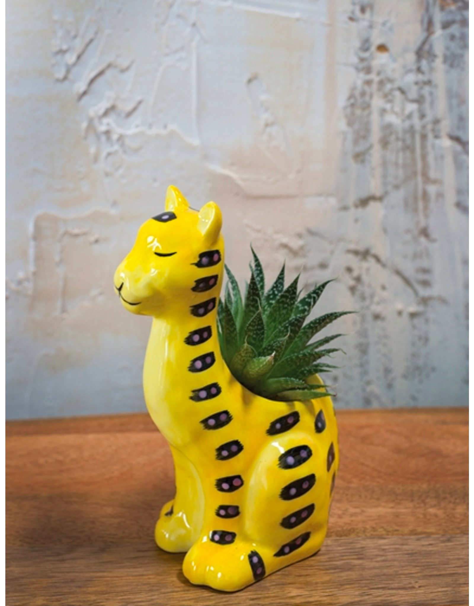 "Untamed Planter Cheetah 4.25"" x 3"" x 6.75"""