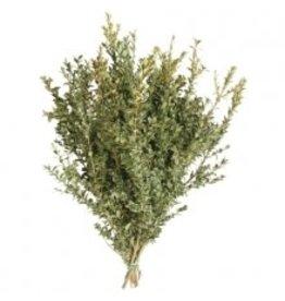 Oregonia Bunch