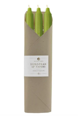 Northern Lights Taper Candle 6 Pack in Moss Green