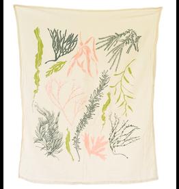 June & December Atlantic Seaweeds Kitchen Towel