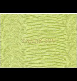 Caspari Lizard Green Thank You Note Box