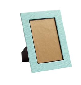 "Caspari Lizard 4"" x 6"" Frame in Robin's Egg Blue"