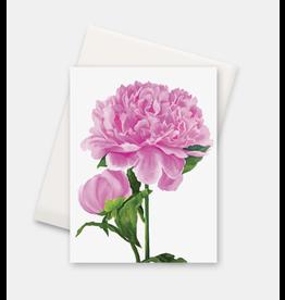 Paint & Petals Peony Card Box Set