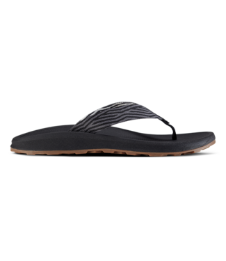 Chaco Men's Playa Pro Web