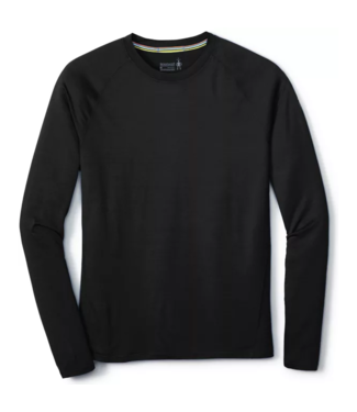 Smartwool M's Merino 150 Baselayer Long Sleeve