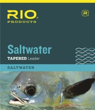 Rio Products Saltwater Leader 10'