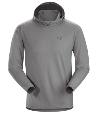 Arcteryx Men's Remige Hoody