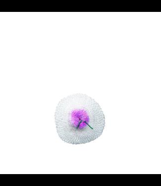 Primus Micron/Easy Light Lantern Mantles