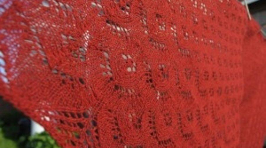 Entrevue avec Le gars qui tricote