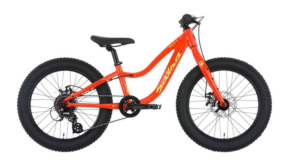 Salsa 2019 Salsa Timberjack 20 Bike Orange