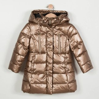 QUILTED METALLIC COAT WITH HOOD