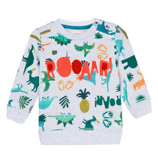 SOFT SWEATSHIRT IN MOTTLED COLOUR, DINOSAUR PRINT