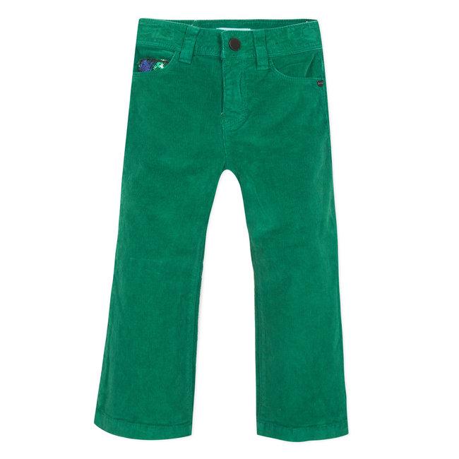 Boxwood green flared valvet trousers