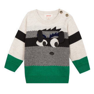 Dog motif and colour herringbone pullover