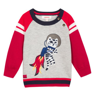 Multi-coloured jumper with an astronaut tiger motif