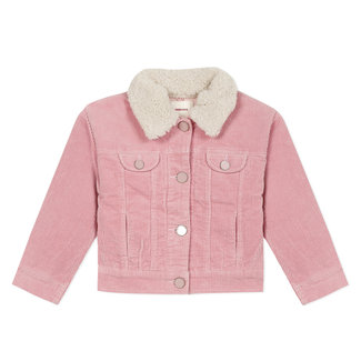 Pink velvet eye catching jacket with terry embroidery back
