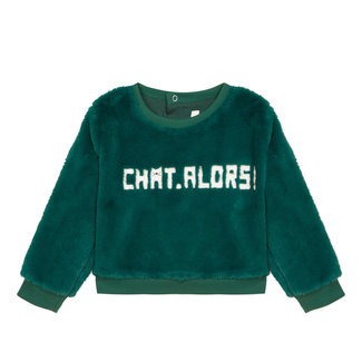 Bottle green fur sweatshirt with text