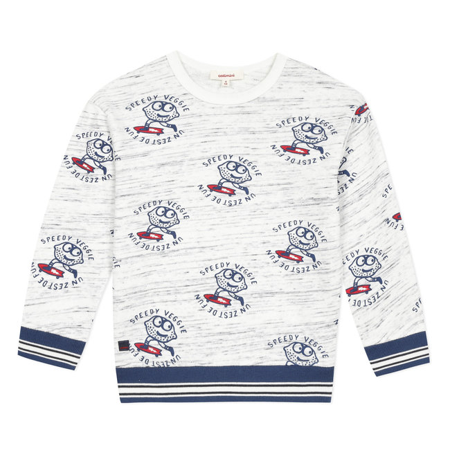 Child boy's printed sweatshirt