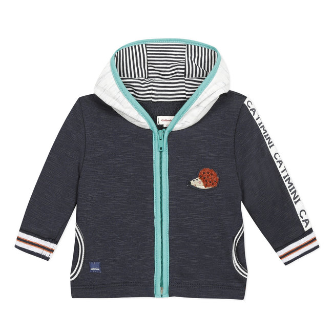 Baby boy's zipped sweatshirt with hood